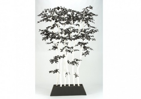 Black Olive Tree Screen