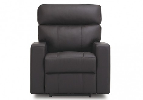 Oakwood Leather Power Recliner Chair