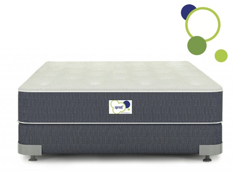 Sprout Firmus Queen Sized Environmentally-Friendly Natural Mattress