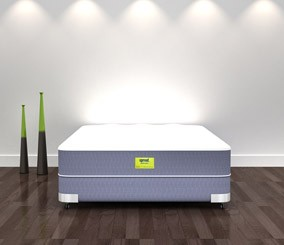Sprout Mollis Queen Sized Environmentally-Friendly Natural Mattress
