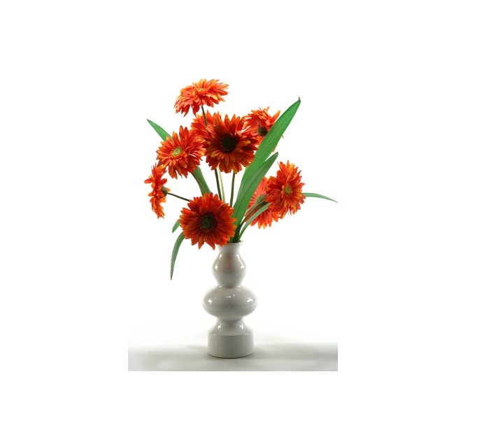 Gerber Daisies with Vase